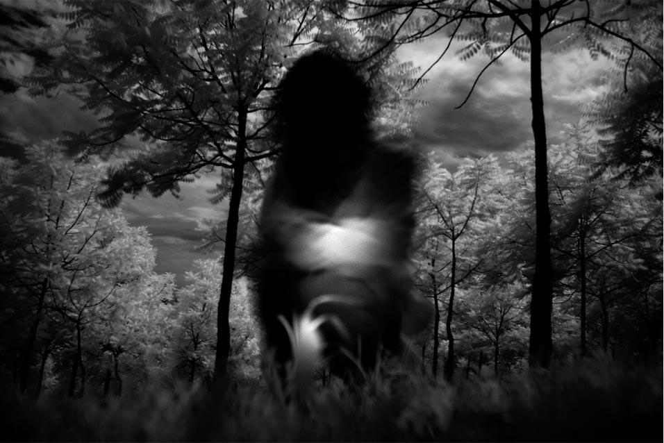 Allison Rufrano Dreamscape Photography Workshop